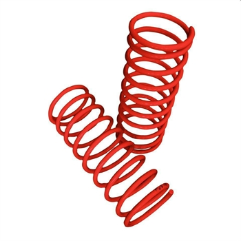 LOWERED SPRINGS 1302/1303 (2)